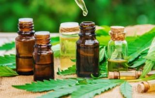 konopný olej z léčebného konopí